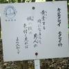 万葉歌碑を訪ねて(その532,533、534)―奈良市法蓮佐保山 万葉の苑(35,36,37)―万葉集 巻十 二二〇二、二二九六、二三一五