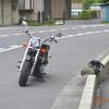 暑い💦のに「冷や冷や💧」のバイクお出掛け。