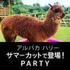 アルパカハリー サマーカットで登場パーティー開催!参加者受付中!