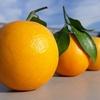 プロコフィエフ:組曲《3つのオレンジへの恋》【行進曲の名盤3枚の解説】ノリとリズムがイイね!