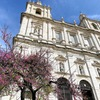 【リスボン】ポルトガルが誇るマニエリスム建築〜Mosteiro de São Vicente de Fora