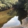 『南谷池』静岡県掛川野池群バス釣り完全攻略マップ