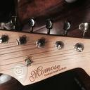 shinya_guitar's blog
