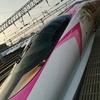 2018年夏長門市と美祢市の旅 その1 秋芳洞と秋吉台から於福駅へ