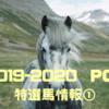 POG 2019-2020シーズン  リーマンの攻略日記③  〜特選馬情報!その1〜