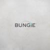 「Bungie」と「Activision」のパートナー契約が終了、今後の「Destiny」は Bungie のみの管理下に