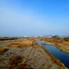 重信川中流探鳥会 2013年1月
