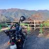 ハーレーダビッドソン SPORTSTER XL1200NS アイアン1200 で御嶽渓谷から奥多摩へ紅葉を観に行ってきた! #ハーレー #スポーツスター #Harley #Sportster #1200NS