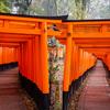 【京都】COOL JAPAN 京都の名所を巡る【京都府】