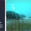 Underwater FX 泳ぐ魚やクラゲも入った「海底」シーン用3Dモデルとエフェクト素材集