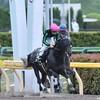 タコイチの【今週の勝負レース】レパードS!