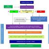 緊急時の医学教育におけるカリキュラムの提供.COVID-19パンデミックへの対応を踏まえたガイド