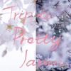 Spring Festival 粋 2017 ― 八芳園
