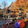 【京都】【御朱印】東福寺塔頭、『勝林寺』に行ってきました。 京都観光 京都旅行 社寺めぐり 女子旅 主婦ブログ