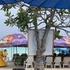 パタヤ ラン島に行ってみた