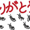 アリの観察をしよう6 (終了)