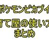 【ポケモンピカブイ】育て屋とタマゴについて