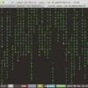 RaspberryPi3 コマンドcmatrixをインストール → マトリックスの「あの画面」をコンソールに流す