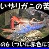 青いザリガニの苦難(6)