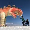 【ウユニ塩湖】超絶景!ウユニ塩湖に行ってみた!!〈ツアー内容、ポイント〉