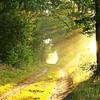 朝の習慣で人生の質が変わる + 朝から活動的な人の習慣とは