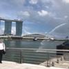 夫のシンガポール出張と日本への一時帰国が難しくなった件
