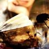 12月に読みたい本冊。今月は何冊読めるかな?