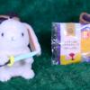 【レアチーズのもちもちクレープ】ファミリーマート 12月26日(木)新発売、コンビニ スイーツ 食べてみた!【感想】