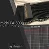 ピュア アナログパワーアンプ PA-300II ピアニシモ・カスタム ('21-07)