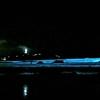赤潮と夜光虫