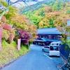 大沢温泉山水閣は混浴風呂の露天風呂がある歴史ある旅館です!