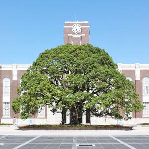 【感想2/2】2019年京都大学文化祭(NF)の謎解きイベントがよかった!