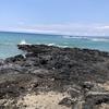 ハワイ島の旅 ❷