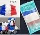 不織布マスク10枚入り 使い捨てマスク 国旗デザイン ナショナルフラッグ フランス |