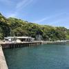 興津港で釣りしました。