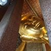 花粉から逃避のバンコク観光、アユタヤ遺跡+バンコク3大寺院 1日ツアー