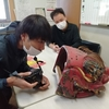 【2020年10~11月】石川県加賀市 獅子舞取材16日目 伊切町