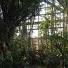 懐かしき場所碧南にて収穫体験ー教員時代の当時を振り返って
