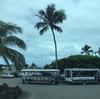 ハワイ旅の記録-クアロアランチ編その1