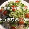 【ドラマきのう何食べた?】第2話 あらすじと「薬味たっぷりぶっかけ素麵」実食レビュー!^^