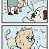 【犬漫画】サマーカットの大きさを測りかねる