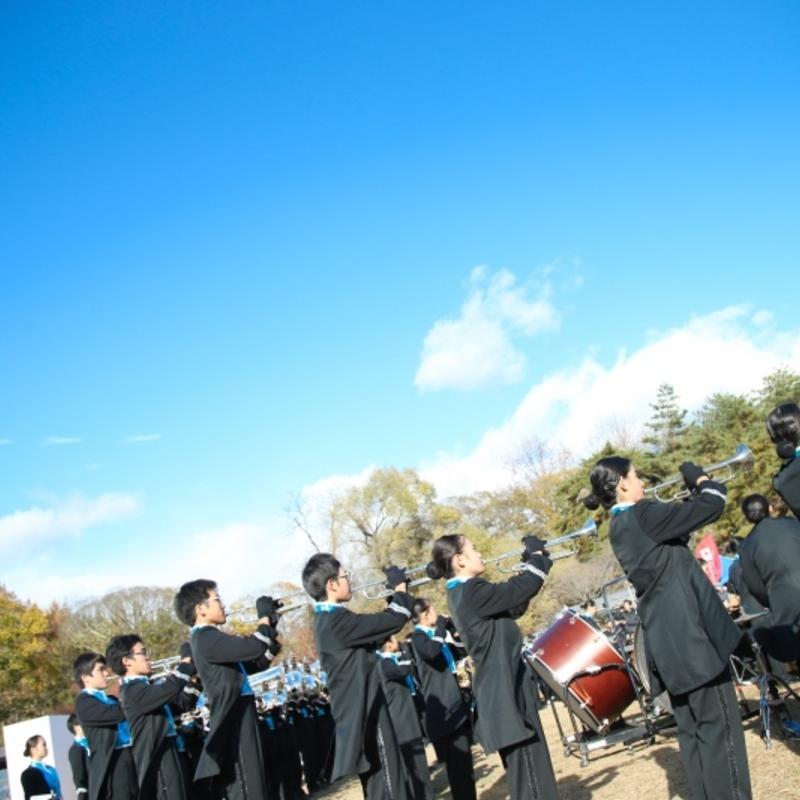 京都府最大の秋フェス「あすKyoフェスタ」へ行ってきた!