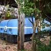 おとぎ列車だった西武山口線の保存車 浜松市