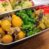 【1食93円】鳥もつ煮節約弁当レシピ~B級グルメで人気!鶏の「きんかん」と「玉ひも」を甘辛く煮上げました~【パパ手作り】