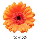 tomo3's  diary