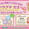 三幸製菓|ホラグチ カヨ コラボグッズプレゼントキャンペーン合計2,000名に当たる!