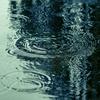 【アロマ五行歌】雨のにおい