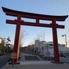 鎌倉の桜はまだ咲いてません(2019年3月20日)【鶴岡八幡宮・段葛】
