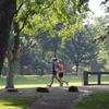 涼しくなり、走りやすい季節になりました!初心者がマラソンに向けトレーニング中です!【開始9ヶ月目】