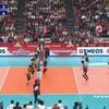 W杯女子バレー日本VSカメルーン戦はストレート勝ち!今日の試合の感想と明日の試合(中国)の予想